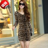 Summer V-neck leopard print slim 2013 spring chiffon long-sleeve dress slim waist women's