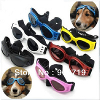pet dog glasses  eyewear  sunglasses  tide dog  sunscreen  windproof  UV