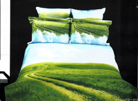 New!4pcs 3d bedding sets 100% cotton.High quality.The blue sky and green grass.Printed bedclothes the bed linen queen 5115
