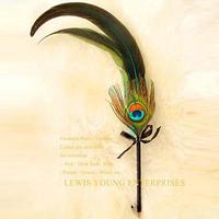 2014 fashion vintage peacock feather ballpoint pen  wedding signature pen new celebration stationery gift set birthday gift