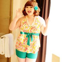 The new 2013 Hot spring swimwear mm big super large female swimwear one-piece dress quinquagenarian swimwear  Free Shipping