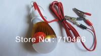 Solar Lamp Dc12V  Led Chip Bulb Light, E27 Dc 12V Battery Emergency Bulb Lighting Free Shipping 6pcs/lot