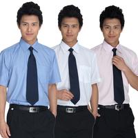 Wrinkle-free easy care shirt work wear male work wear shirt short-sleeve formal shirt