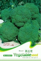 1 Pack 50 Seed Broccoli Seeds Cauliflower Seed Green Vegetable C007