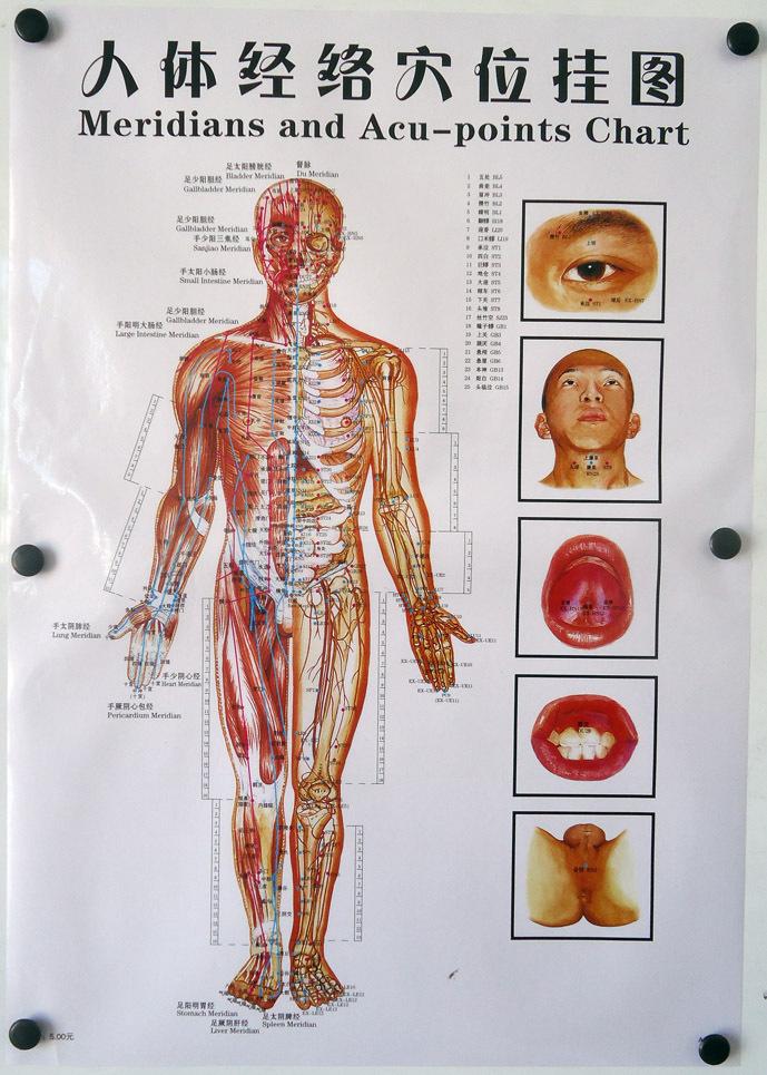 Схема меридиан точки здоровья