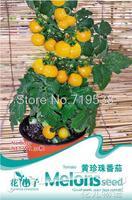 Yellow pearl tomato bonsai seeds - tomato 30seeds b039