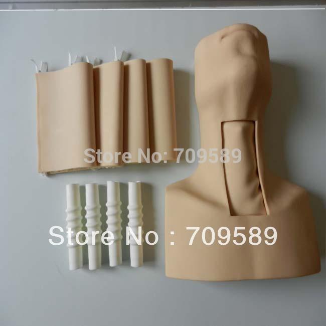 HOT SALE tracheostomy simulator(China (Mainland))