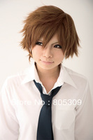 Free Shipping 2013 Fashion Arrival Anime Unisex 25cm Short Browm  Cosplay Hair Wig/Wigs  CW180