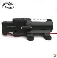 Free shipping 12V 15W micro diaphragm pump discharge pressure backflow 0142 thread water pump wash car