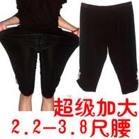 Plus size plus size clothing summer mm Large shorts trousers legging