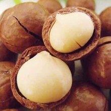 Nut snacks 200g creamier 500g nuthouses
