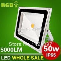 DC12V/85-265V 10W 20W 30W 50W Landscape Lighting IP65 LED Flood Light Floodlight LED street Lamp Fedex Free Shipping