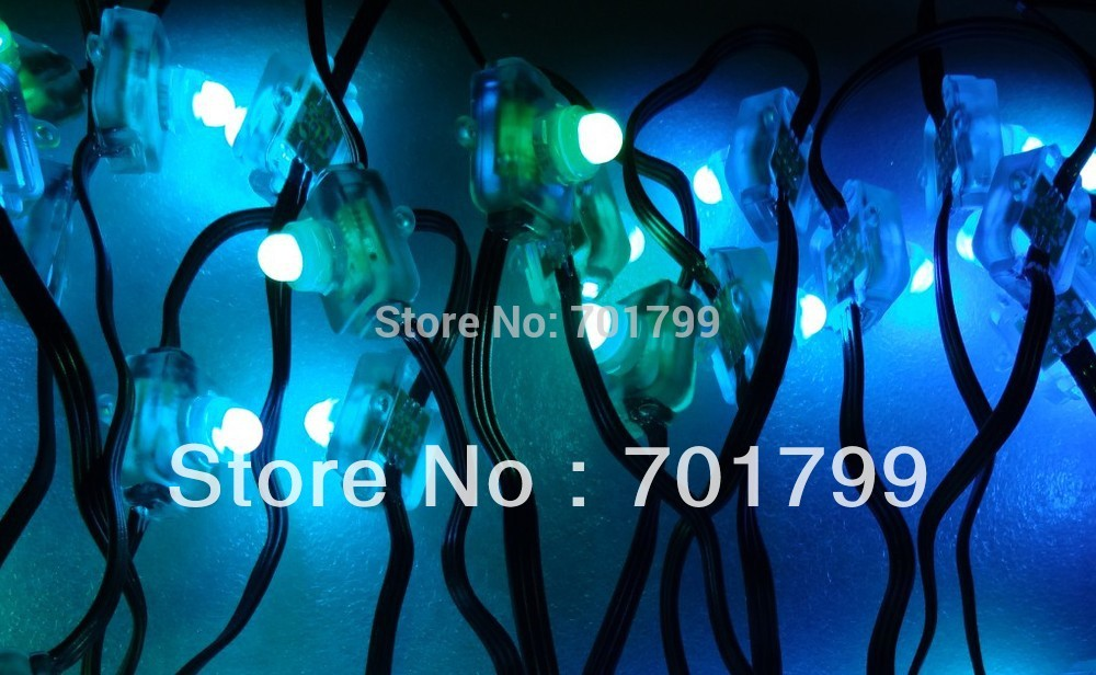 100pcs DC12V input WS2811 LED pixel light,with all black wire,IP68 rated;with epoxy resin filled(China (Mainland))
