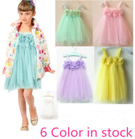 Retail  1pcs/lot, 2013 Boutique foreign trade girls Petals lace tutu dress,free shipping