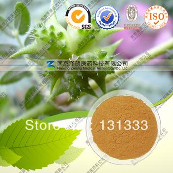Natural Tribulus Terrestris Extract  Tribulus terrestris saponins 90%
