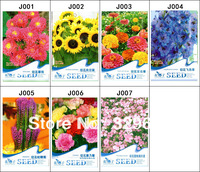290 Seeds 7 Different Cut Flower Seeds Callistephus Sunflower Zinnia Grandiflorum Gayfeather Carnation Gypsophila Free shipping