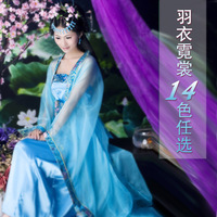 free shipping silk Costume clothes fairy hanfu tang suit tang dynasty zheng female silk costumes costume