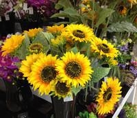 Free shipping 9 sunflower artificial flower silk flower artificial flower bowyer artificial flower