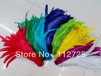 EMS Free shipping Wholesale 1000pc/lot mix color 35-40Cm Cock Tail rooster tail Feather Plume  performance Plume Rooster feather