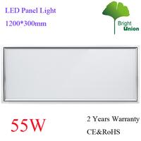 Energy Saving 55W LED Panel Lighting 1200*300MM 2 Years Warranty