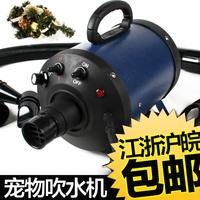 High quality dog chuishui machine frequency conversion cs-2400w pet hair dryer
