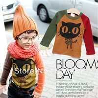 2013 new autumn children clothing ,fashion sweatshirts for boy,high quality boy's Long-sleeved t-shirt ,children base shirt