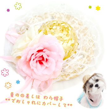 free shipping New arrival ! lace rose pet strawhat cat dog