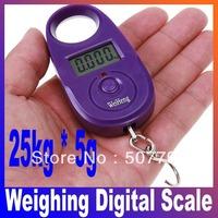 25kg*5g 25kgx5g 25kg-5g Mini Purple Display Hanging Luggage Fishing Weighing Digital Scale KG LB, freeshipping