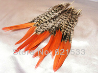 Перья Feather Show 50Pcs/lot 6/8 15/20 ,  FP021