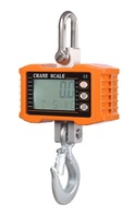 Capacity 300kg Smart High Accuracy Electronic Crane Scale (OCS-S300)