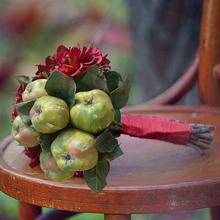 popular dahlias flower
