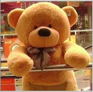 Plush toy cloth doll bear doll Large gift(China (Mainland))
