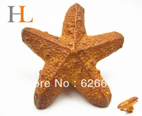 12pcs starfish knob/ lovely new designed resin cartoon pull
