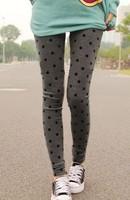 woman new fashion dot pattern printed stretchy ninth pants leggings free shipping A420B-828
