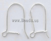 Free shipping!!!Stainless Steel Hook Earwire,Wedding, 304 Stainless Steel, oril color, 20x10x0.70mm, 1000Pairs/Bag, Sold By Bag