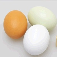 Free Shipping!Wholesale Cute Eggs Wooden Kitchen Food Toy Kid Educational Play House Toy East Day Egg Attach Brush and Paint 5pc