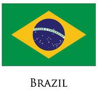 2pcs/lot Ordem e Progresso  Flag of Brazil BRASIL LOGO 3 X 5 feet national country flag Brazilian Flag90x150CM Free shipping