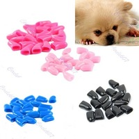 20pcs Soft Dog Cat Pet Nail Caps Claw Control Paws off with Adhesive Glue+Free Shipping