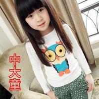 2013 spring autumn fall children clothing girls clothes new cartoon printing owl girls long sleeve shirt t shirts 4T-14
