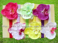 "30pcs/lot  baby Elastic Headbands,soft stetch headband with 4"" Moth Orchids flowers"