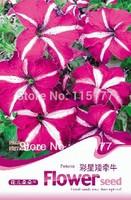 Free shipping 150 Petumia hybrida seeds,,Hydrangea plant seeds,original pack seeds