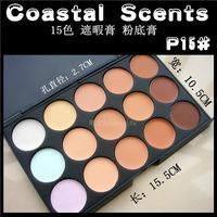 Coastal scents 15 makeup palette eye facial 15 zhexia cream foundation cream
