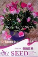 Free shipping 150 Lathyrus odoratus seeds,,Hydrangea plant seeds,original pack seeds