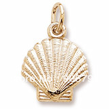 Free Shipping 10pcs a lot  18K gold plated realistic shell charms