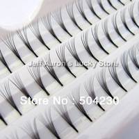 3 trays 12mm 10mm 8mm  D Lash Curl Natural Individual False Eyelashes Extension 60 Knosts per tray 8 Eye Lash per knot