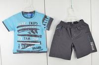 babies boy 2pcs clothing sets for summer fashion wholesale size 9M-12M-18M-24M t shirt and short pants suit 2956B3 Free Shipping