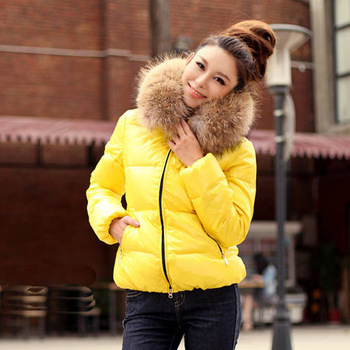 free shipping 2013 large fur collar winter candy color thickening cotton-padded jacket short design slim wadded jacket