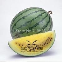 balcony bonsai fruit seeds mini - meat watermelon 5   pcs Vegetable seeds