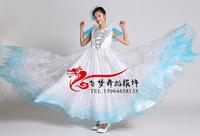 Expansion skirt performance wear costume dance clothes dance clothes