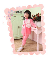 Free Shipping 2013 New Autumn and Winter High-end Children's cute Wear Vest and Dress and Leggings Three-piece Sets xk001